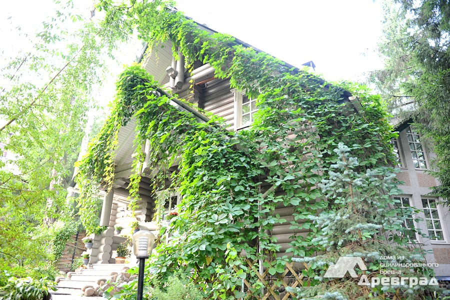 Комплект дома из оцилиндрованного бревна фото