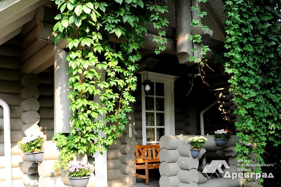 Дом из оцилиндрованного бревна 6х6 фото