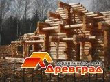 строительство бревенчатых домов срубов